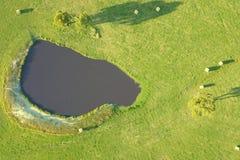 Hooibalen op landbouwgrond in Zuiden Gippsland Stock Foto's