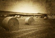 Hooibalen in platteland Stock Afbeelding