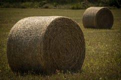 Hooibalen voor landbouwbedrijven op land stock afbeelding