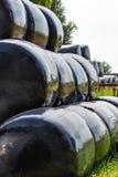 Hooibalen in zwart plastiek dichtbij Zoetermeer, Nederland worden verpakt dat Stock Foto's