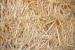 Hooiberg natuurlijke geel als achtergrond en bruin koopt tarwe Stock Foto's