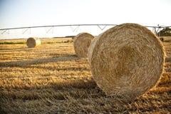 Hooiberg op gebied na het oogsten Stock Foto