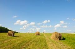 Hooiberg tegen de zomer bewolkte hemel Stock Foto's
