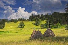 Hooibergen in berglandschap met bos in de rug Royalty-vrije Stock Fotografie