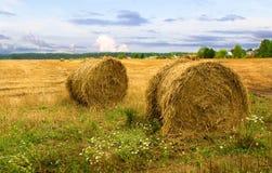 Hooibergen na oogst Stock Foto
