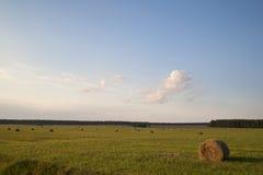 Hooibergen op het gebied Stock Afbeeldingen