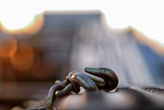 Hook on the back of a truck used for transporting vehicles. stock photo