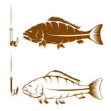 Hook with beans and carp vector design. Template Stock Images