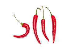 Hook shape chili pepper on white background Royalty Free Stock Photo