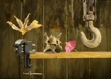 Hook, skull, umbrella and dryed flower Stock Photos