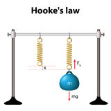 Hooke's law. the force is proportional to the extension. Hookes law. law of elasticity. for relatively small deformations of an object, the displacement or size Stock Image