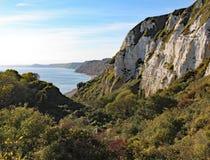 Hooken undercliff tussen Branscombe en Bier in Devon, Engeland royalty-vrije stock foto