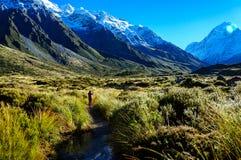 Hooker η διαδρομή κοιλάδων, τοποθετεί Cook, Νέα Ζηλανδία Στοκ εικόνα με δικαίωμα ελεύθερης χρήσης