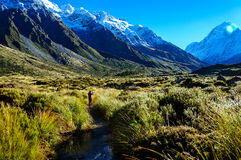 Hooker-Tal-Bahn, Berg-Koch, Neuseeland lizenzfreies stockbild