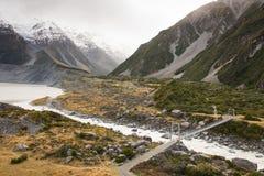 Hooker Valleispoor, Nieuw Zeeland Stock Afbeelding