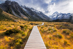 The Hooker Valley track, Mount Cook, New Zealand Royalty Free Stock Photos