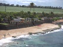 Hookipa-Strand Maui Stockbild