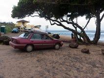 Hookipa strand Maui Arkivfoton