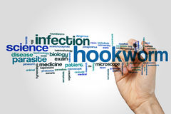 Hookworm word cloud. Concept on grey background Royalty Free Stock Images