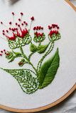 Hoop modern embroidery with botanical motifs on a wooden background Royalty Free Stock Images