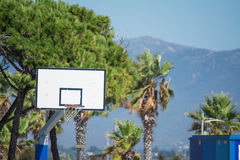 Hoop and palms Stock Photo