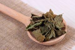 Hoop van droge citroenbalsem met lepel op witte houten lijst, herbalism stock afbeelding