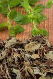 Hoop van droge en verse citroenbalsem op houten lijst, herbalism royalty-vrije stock foto