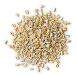Hoop van ebly zaden stock foto's