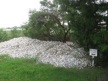 hoop van gebruikte oestershells in Charleston South Carolina Royalty-vrije Stock Foto's