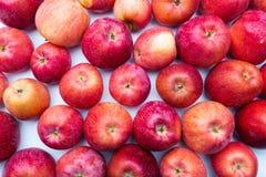 Hoop van ongewassen rode appelenmengeling op houten achtergrond stock fotografie