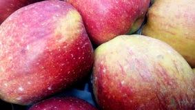 Hoop van ongewassen vuile rode appelen royalty-vrije stock fotografie