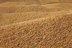Hoop van orngewas na oogst stock foto's