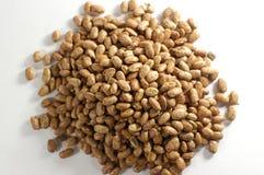 Hoop van Pinto Beans Stock Fotografie