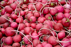Hoop van Rijpe Radijs /Turnips bij een Markt van de Straat Royalty-vrije Stock Foto