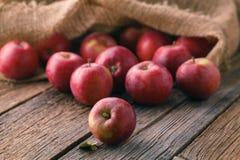 Hoop van rode appelen in jutezak royalty-vrije stock foto's