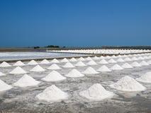 Hoop van zout op zout gebied vóór oogst stock foto's