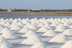 Hoop van zout op zout gebied vóór oogst stock afbeeldingen
