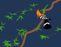 Hoopoe on tree Royalty Free Stock Image