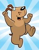 Hooray Dog Royalty Free Stock Photo