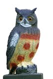 Hoot Owl. Plastic, artificial great horned owl model, isolated. Fake owls are used to ward off pests Royalty Free Stock Photo