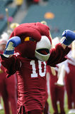 Hooter - the Temple University Owls mascot Royalty Free Stock Photography