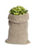 Hop in a bag. Royalty Free Stock Images