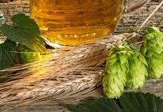 Hop Cones And Barley Stock Photos
