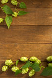Hop cones on wood Royalty Free Stock Photos