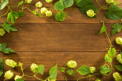 Hop cones on wood Royalty Free Stock Photo