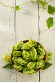 Hop cones on wood Royalty Free Stock Photography