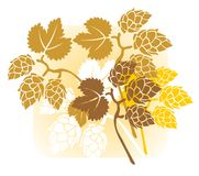 Hop flowers. Stylized hop flowers composition on a yellow background Royalty Free Stock Photo