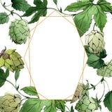 hop groen blad Het ornamentvierkant van de kadergrens Tuin bloemengebladerte Waterverf achtergrondillustratiereeks royalty-vrije illustratie