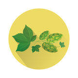 Hop Icon Natural Plant Beer Oktoberfest Festival Holiday Royalty Free Stock Images