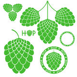 Hop. Isolated objects on white background. Vector illustration (EPS 10 Royalty Free Stock Photography